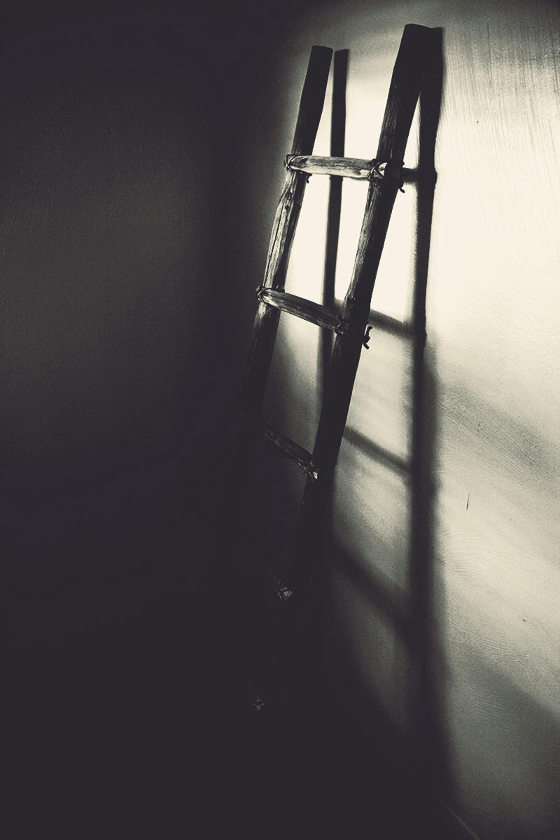 '... I will bring you a ladder' - 2014
